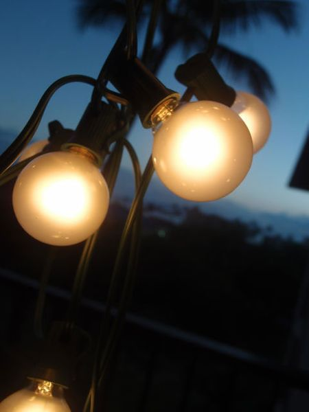 SALE ! String Light - 25 Globe Bistro Lights - Frosted Bulbs - Works With Paper Lanterns!