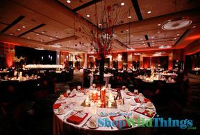 Transformative Tangerine|Tying A Room Together with Color