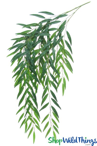 """COMING SOON! Weeping Willow Spray - 54"""" Bendable Greenery Stem - 187 leaves"""