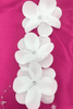 White Craft Plumeria Flowers with Rhinestones - 6 Garlands, 6 Feet Long Each
