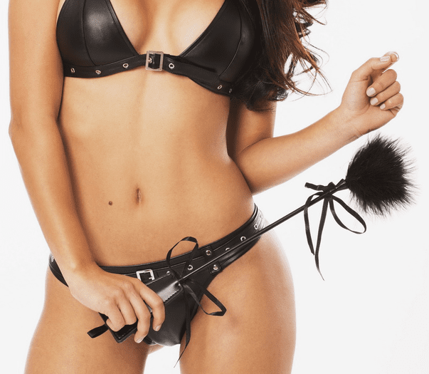 Giselle's Feather Tickler & Whip