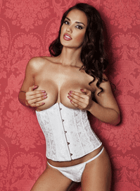 Hold Me Close Underbust Corset