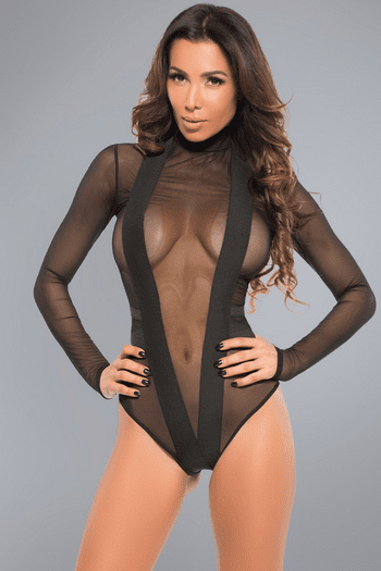Irresistible Sheer Bodysuit