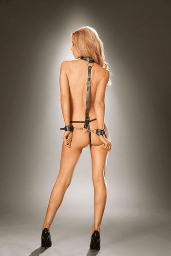 Leather Collar to Wrist Restraints