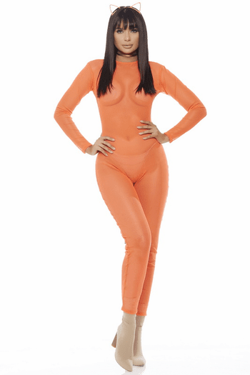 Mesh Long Sleeve Catsuit