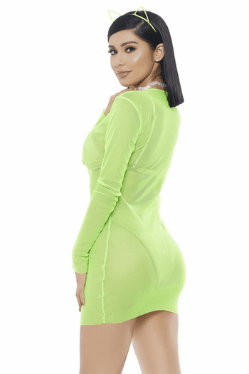 Mesh Long Sleeve Mini Dress