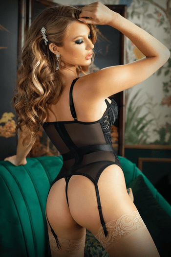 Moonlight Caged Lace Bustier