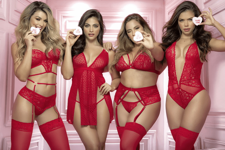 Plus Size Red Light Special Red Lace Bra & Garter Set