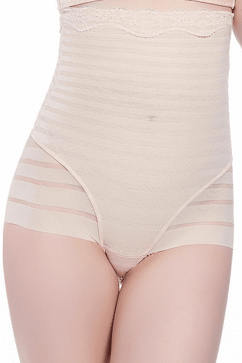 Plus Size High Waisted Sheer Brief