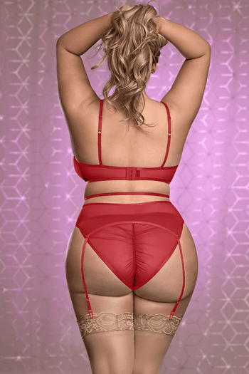 Plus Size Red Mesh With Me Mesh Bra & Garterbelt Set