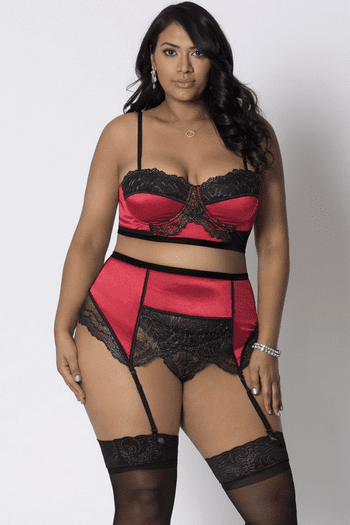 Plus Size The Perfect Night Crop Top & Garter Set