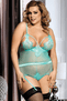Plus Size Unforgettable Night Sheer Teddy & Garter Set