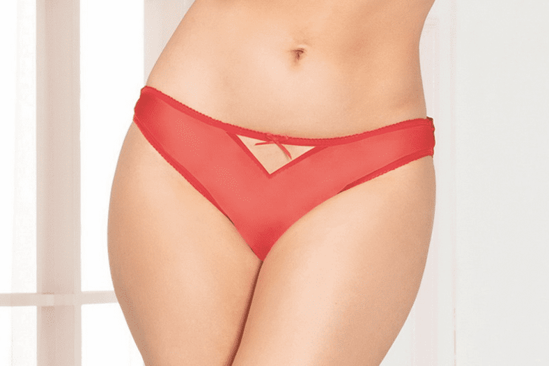 Red Mesh & Lace Open Crotch Panty