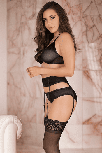 Sheer Bra, Garterbelt, & Panty Set