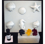 SOAP KIT, SIX SEALIFE STYLES