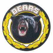 Bears Mascot Medal Insert - Click to enlarge