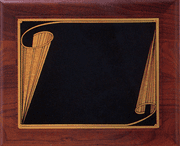 Blank Recognition Plaque - Click to enlarge