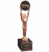 Corporate Champion Custom Award - Click to enlarge