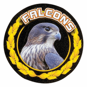 Falcons Colorful Mascot Medal Insert - Click to enlarge