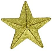 Gold Star Pins - Click to enlarge