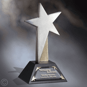 Guiding Star Award for Leadership - Click to enlarge