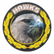 Hawks Mascot Medal Insert - Click to enlarge