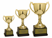 Metal Trophy Cups - Click to enlarge