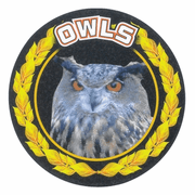 Owls Colorful Mascot Medal Insert - Click to enlarge