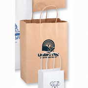 Custom Paper Shopping Bags with Handles - Click to enlarge