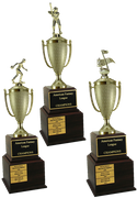 Perpetual Team & Fantasy Trophies - Click to enlarge