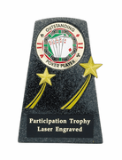 Outstanding Poker Player Trophy - Click to enlarge