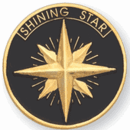 Shining Star - 1 Inch Gold Pin (BR Series) - Click to enlarge