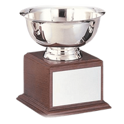Silverplate Steel Championship Trophies - Click to enlarge