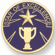 Star of Excellence Pin (BR Series) - Click to enlarge