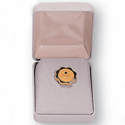 Velour Covered Hinged Pin Box - Click to enlarge