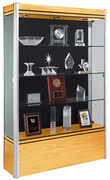 Waddell Contempo 601 Floor-Standing Trophy Case - Click to enlarge