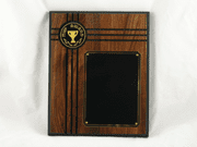 MVP Award Plaque - Click to enlarge