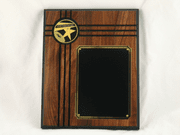 Star Performer Plaque - Click to enlarge