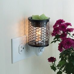 **NEW** Pluggable Wax Warmer Chicken Wire