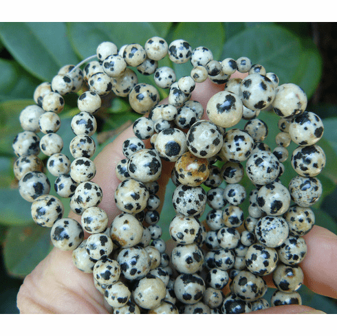 "Dalmatian Jasper Beads your choice of 4-6-or 8mm 16"" strand Beads"