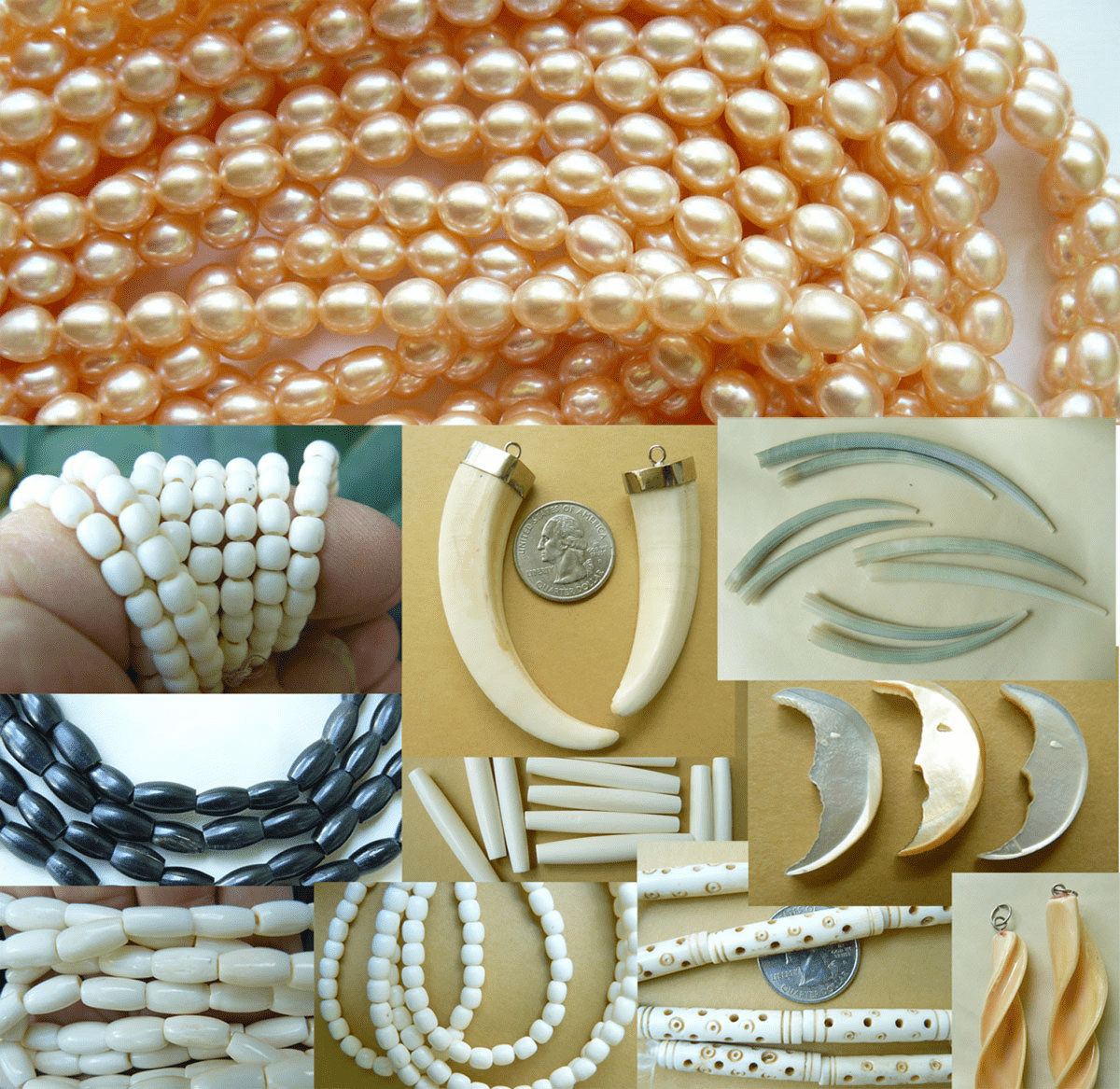 Pearls. shell. Coral