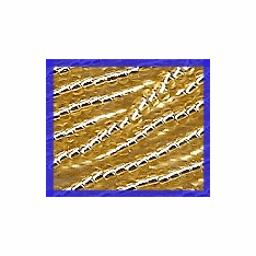 Silver Lined Light Gold 10/0 Seed Beads