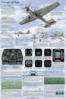 Basics of Flight Aviation Poster - Laminated