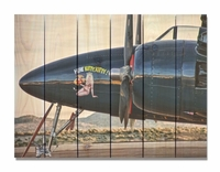 F7F Tigercat Indoor Outdoor Art - Large