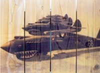 P-40 Tiger Shark Indoor Outdoor Art - Medium