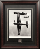 P-40 Warhawk Airplane Collectible Skin Relic