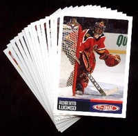 2002-2003 Topps Total NHL Florida Panthers Hockey Card Team Set