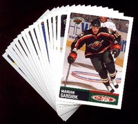 2002-2003 Topps Total NHL Minnesota Wild Hockey Card Team Set