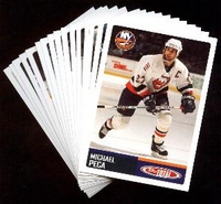 2002-2003 Topps Total NHL New York Islanders Hockey Card Team Set
