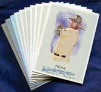 2010 Topps Allen and Ginter Tampa Bay Rays Baseball Card Team Set
